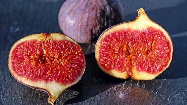 fruit legume figue