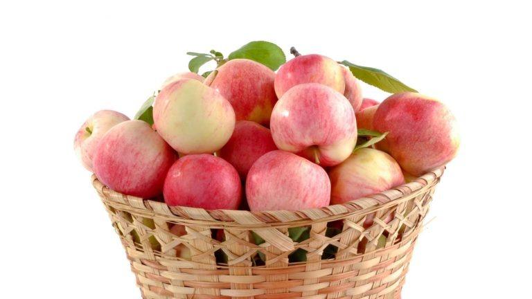 fruits legumes pomme