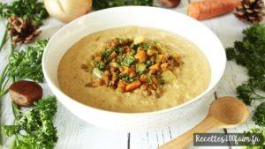 lentilles en conserve recette soupe