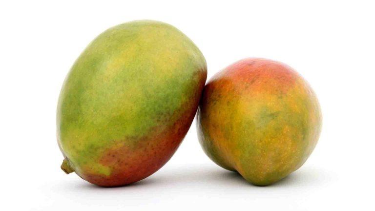 fruits et legumes saison mangue