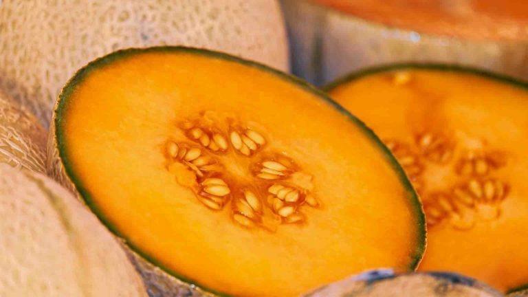 fruits legumes saison melon
