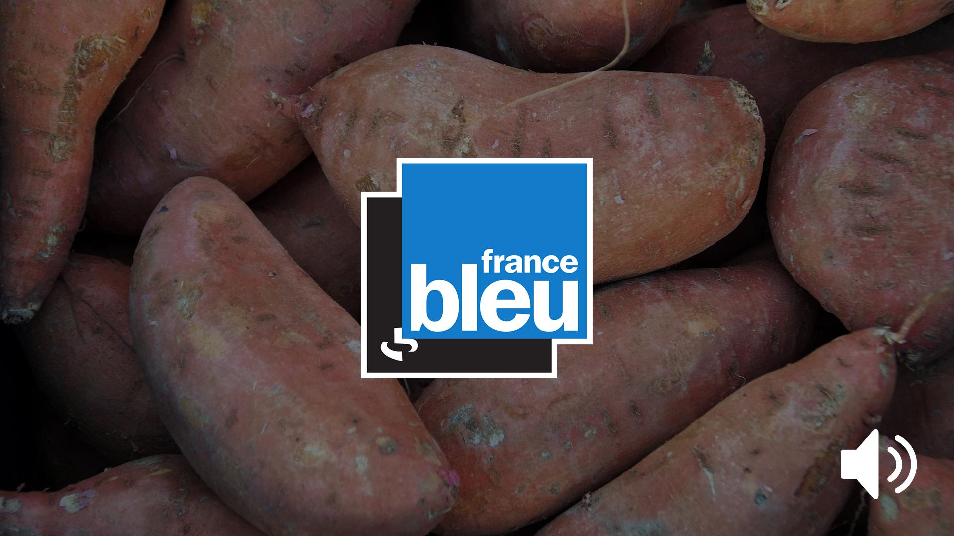 emission radio patate douce
